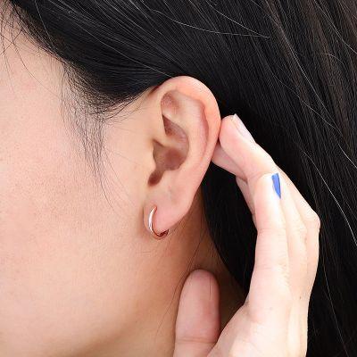 Turtle Hoop Earrings Set