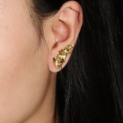 Golden Butterfly Climbers Earrings